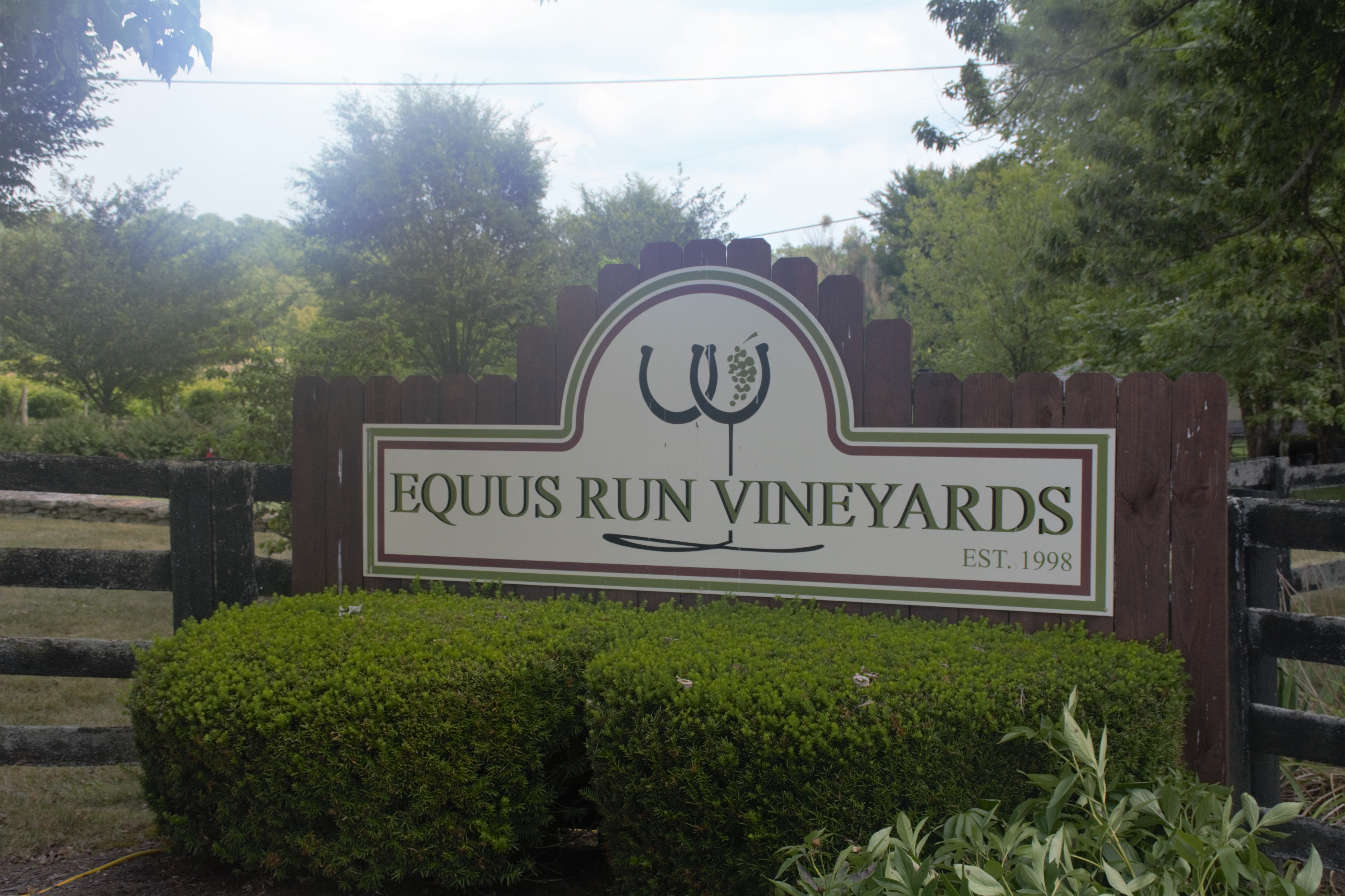 Equus Run Vineyard