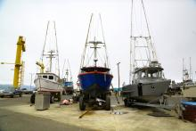 Port Orford Sustainable Seafood helps local, small-town fishers market and sell their products.